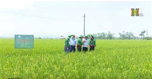 Uỷ ban MTTQ Việt Nam thành phố Hà Nội tổ chức hội nghị Phản biện xã hội